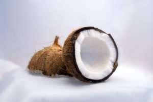 Kokosnuss-Coconut.jpg