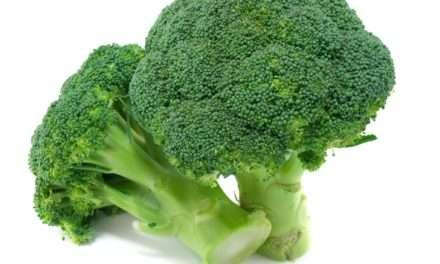 Broccoli for Health? – Top 10 Benefits