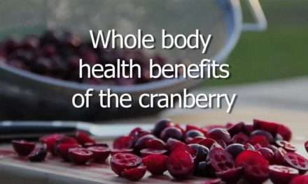 [Recipe] Sweet-Spiced Cranberry Smoothie Plus VIDEO on Whole Body Health Benefits of the Cranberry